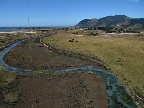 Wakapuaka Sand Flat / Wetlands