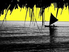 YELLOW BAROTO (charlie1020) Tags: blue yellow sailboat baroto