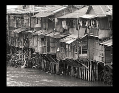 Riverside (bw): slums by the Ciliwung river (Tempo Dulu) Tags: poverty bw indonesia jakarta slums thirdworld ciliwung bukitduri earthasia
