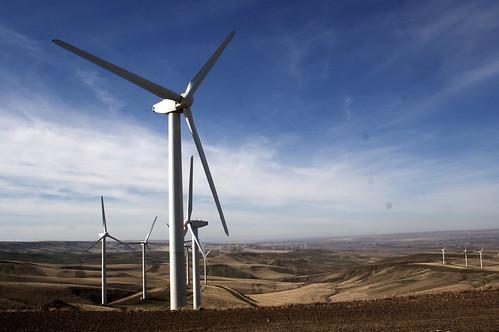 Combine Hills Windfarm