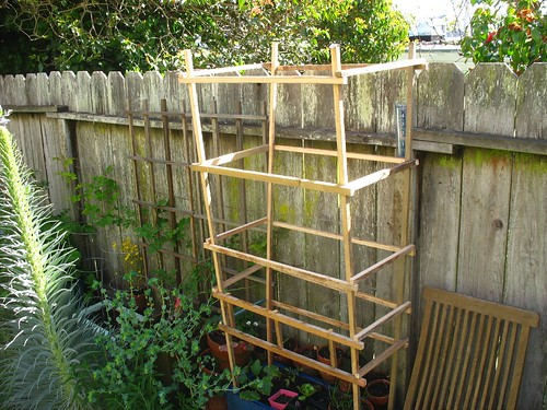 i built this tomato cage