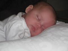 Anya Sleeping