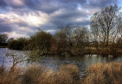 England: Northamptonshire, Wetlands, Early Spring (Tim Blessed) Tags: trees sky nature water clouds reeds landscapes countryside scenery wetlands ponds takeabow mywinners avision aplusphoto diamondclassphotographer singlerawtonemapped