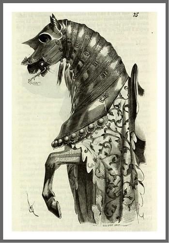 Pag 72- Amadura de caballo