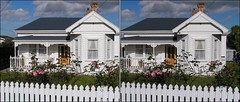 House with picket fence in 3D (Ray Tomes) Tags: pink roses house fence garden 3d crosseye auckland birkenhead nz picket crossview raytomes