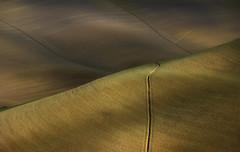 Crete Senesi (Rolando Cherubini (orlonda2008)) Tags: toscana siena crete cretesenesi