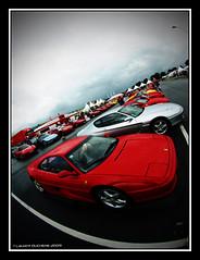 Ferrari Park (Laurent DUCHENE) Tags: sport ferrari collection gt 2009 456 f355 vigeant