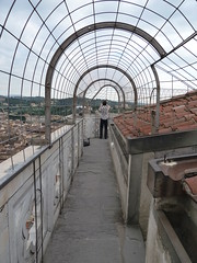 On top of Giotto's Campanile