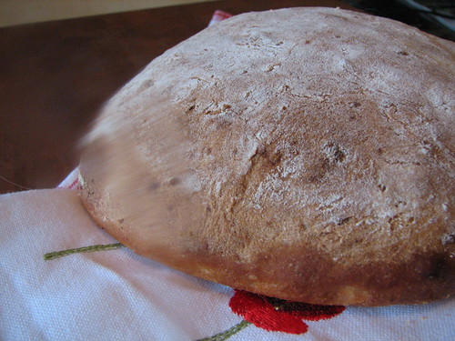 Potato bread - Boule