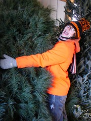 Gotta love your Christmas tree