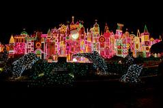 Disneyland December II (39)