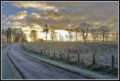 Christmas Morning (echristopher) Tags: road christmas trees winter light sun cold ice silhouette rural forest sunrise landscape scotland woods frost fife outdoor winterscape tarvit great123