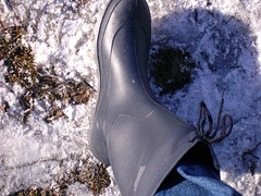 januar2006 027 (scaleomarkus) Tags: wood city schnee summer snow beach look rain sport river happy sommer spiegel wiese line jeans gelb yamaha clogs gras fluss wellies landschaft wald gummistiefel hof teppich esprit lech motorrad r6 rainboots stausee knigsbrunn romika merching unterbergen stulpe sportmotorrad