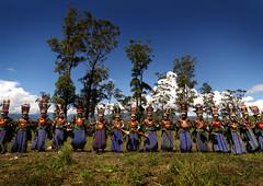Mount Hagen singsing (Eric Lafforgue) Tags: pictures photo highlands picture culture highlander tribal mount highland papou tribes png tribe papuanewguinea papua ethnic hagen papu ethnology tribu 巴布亚新几内亚 ethnologie ethnique papous papuaneuguinea lafforgue papuanuovaguinea パプアニューギニア ethnie ericlafforgue papuan papouasienouvelleguinée mounthagen mounthagenshow papuans papoeanieuwguinea papuásianovaguiné mthagenshow ericlafforguecom a9534 παπούανέαγουινέα папуановаягвинея papuanewguineapicture papuanewguineapictures paouasienouvelleguinéephoto papouasienouvelleguineephotos papuanewguineanpeople mthagenfestival mounthagenfestival maquillagemounthagen maquillagemthagen makeupmthagen papúanuevaguinea augustfestival 巴布亞紐幾內亞 巴布亚纽几内亚 巴布亞新幾內亞 paapuauusguinea ปาปัวนิวกินี papuanovaguiné papuanováguinea папуановагвинеја بابواغينياالجديدة bienvenuedansmatribu