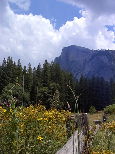 Photo of the Day: Half Dome from Stoneman Meadow by Daren Tatham