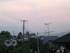 houses on a slope (Molly Des Jardin) Tags: 2003 pink blue sunset mountains green home japan buildings gray wires infrastructure fukuoka slope kyushu shime kasuyagun