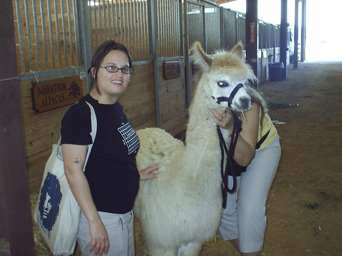 Me and an alpaca
