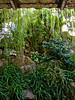 BJ462 Duke Gardens (listentoreason) Tags: usa america newjersey unitedstates scenic favorites places olympus greenhouse dukegardens score35 olympusc4040z c4040z