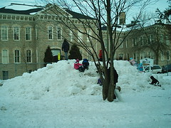 Snow Hill! (jessica_in_to) Tags: winter cambridge snow ontario canada festival centralpark candyland christmasincambridge