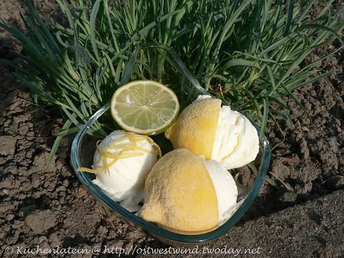 Lemon Yoghurt Ice Cream