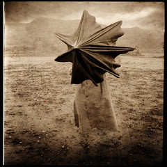 Flying Umbrella (yves.lecoq) Tags: rod 2bdasest hourofthesoul