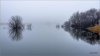Montelago - calma piatta nella nebbia