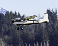 N2482C  1954 Cessna 180 C/N 30782 (Hawg Wild Photography) Tags: n2482c 1954 cessna 180 cn 30782 general aviation arlingtonmunicipalairportkawo terrygreen hawg wild photography