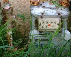 robot (enzo & lulu) Tags: pink blue white green grass yellow metal garden grey rust watermeter ilikegrass fallmorning