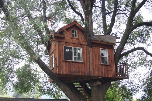 Boulder Creek tree house