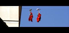 4 días rojos / 4 red days (JFabra) Tags: madrid red españa canon spain rojo lalatina jfabra
