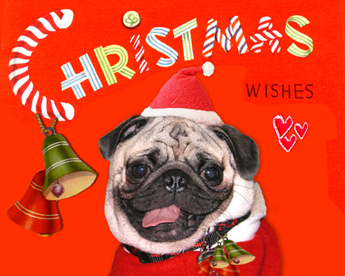 *SMILING PUG* VINTAGE MERRY CHRISTMAS & HAPPY HOLIDAYS CARD
