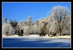 Walk Out To Winter (redmann) Tags: bridge blue trees winter snow ontario canada cold ice landscape ilovenature frost shadows hoarfrost bluesky willow soe stratford lakevictoria canadianbeauty perthcounty thecontinuum mywinners canon400d aplusphoto postcardoftheweek diamondclassphotographer superhearts photofaceoffwinner sigma18200dcos