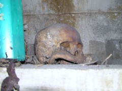 Tengkorak (Skull) (BEST PHOTO) Tags: apple real skull yahoo screenshot flickr googlemaps map earth satellite maps googleearth bestphoto