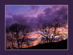 A January morning (regina_austria) Tags: morning trees sun silhouette sunrise bravo sonnenaufgang magicdonkey flickrsbest mywinners anawesomeshot diamondclassphotographer flickrelite reginaaustria thegoldenmermaid theperfectphotographer