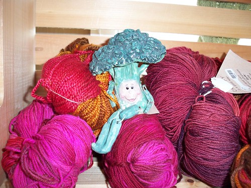 Broc Visits A Yarn Shop!