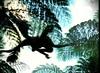 25 Microraptor gliding