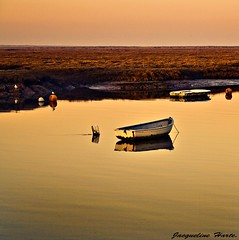 Inspired by.......... (Jacqueline Harte) Tags: reflection boat still little inspired peaceful wells calm together nicolas valentin eow flickrsbest passionphotography anawesomeshot ilovemypic jacquelineharte