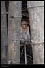 monkey (Smevin Paul) Tags: kfm3 malayalikkoottam smevin paul smevinpaul contact d40x nikon 1855 thrisookaran thrissur kuriachira kerala india trichur trisoor photos photography smevins smevinsphotography smevinpaulphotography smevinsphotos smevinsphotographs smevinpictures smevinspictures passion
