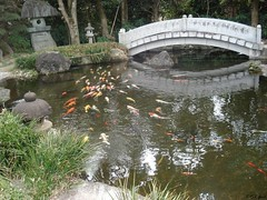 In Takoshima in Japan (Shaima82_4) Tags: bridge lake fish water japan gold ship nippon 20 tample maru swy swy20 takoshima
