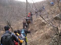 2008-3-8 15-32-50_0077 (FANG Chen) Tags: 2008  0803  lvye