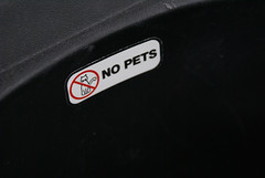 Warning! No Pets!