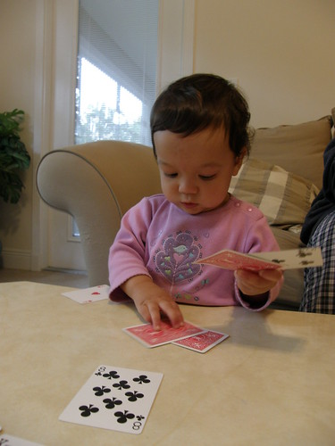 Card Shark 1