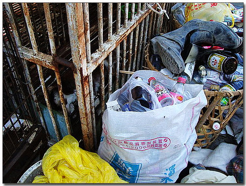 2008-07-21-「尋求支援中途志工」不幸的消息...遺憾...我還能做什麼...