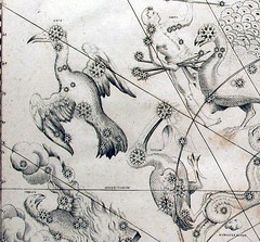 uranometria (t. van gieson) Tags: birds wonderful stars star map engraving atlas astronomy constellation 1661 johannbayer uranometria starguide
