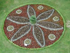 P6113913 (natalija2006) Tags: park plant flower natalija cvet rastlina roa mozirskigaj npisec