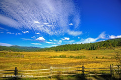 """The Meadow & The Fence (jimgspokane) Tags: mountains mountainroads trees forests meadows camping idahostate otw """"nikonflickraward"""""""