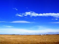 (Windy Angels) Tags: sky canada clouds fence landscape october driving taken blues while prairie saskatchewan between hwy6 purples farmyard windyangels dafoeandwatson