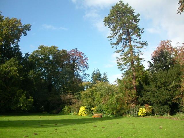 Padmaloka front lawn 3