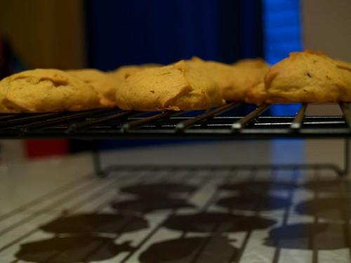 4/365 Spicy Pumpkin Cookies
