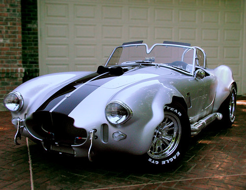 Cool Cobra Picture